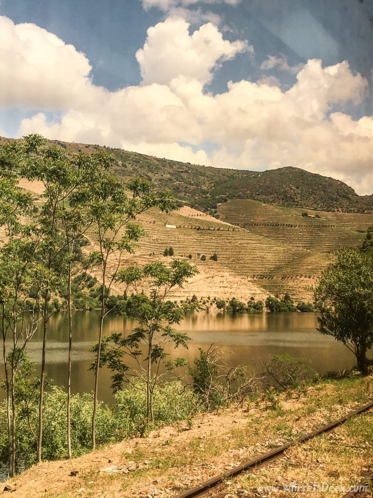 Douro Valley view from the train.