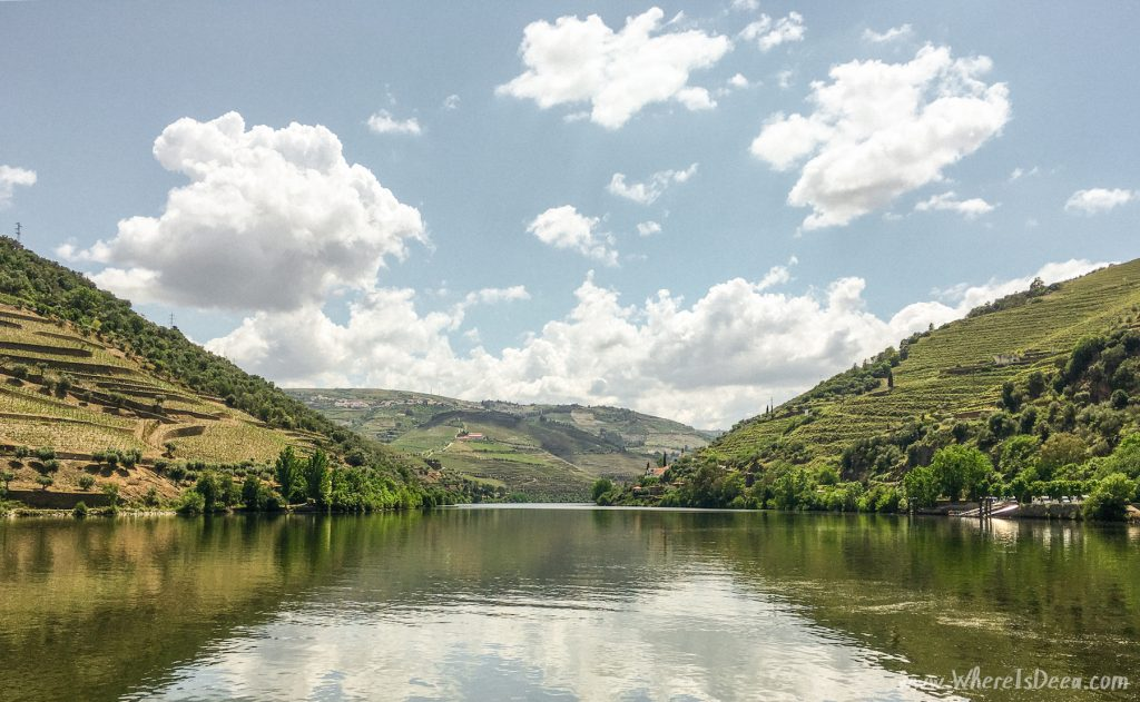 Douro Valley view from the boat.